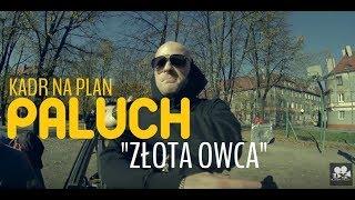 Paluch- Złota Owca (KADR NA PLAN) 9LITER FILMY