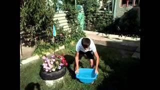 Ice#Bucket#Challenge Громацкого Ивана