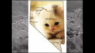 Two-Eyed Cyclops - The Nevada Song (Official Video)