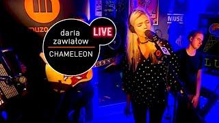 Daria Zawiałow - Chameleon (Live at MUZO.FM)