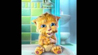 Talking Ginger aaaaa o que fazer antes de durmir