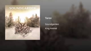 Taree