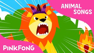 The Lion | Animal Songs | PINKFONG Songs for Children