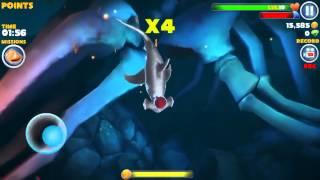 Hungry shark evolution!  HAMMER SHARK kill MEGALODON !!!