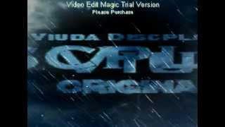 Mix de Regaeton Exitos (Musica Vieja Pero Buena) de La Viuda Discplay La Original