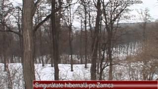 Singuratate hibernala pe Zamca 17.01.2013