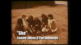 Tommy James and the Shondells - She (Promo w/Stereo)