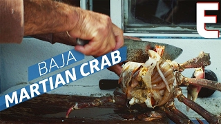 Fried Lobster, Martian Crabs, and Red Snapper at Baja's Tucked Away Fishing Village — Open Road