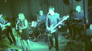 Mr. Rock n Roll  (Amy Macdonald cover )