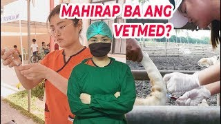 A message to aspiring Vet students! | Arah Virtucio