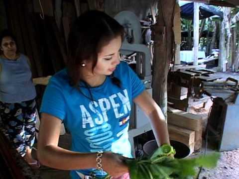 Video Albergue Rural Nicaragua Libre