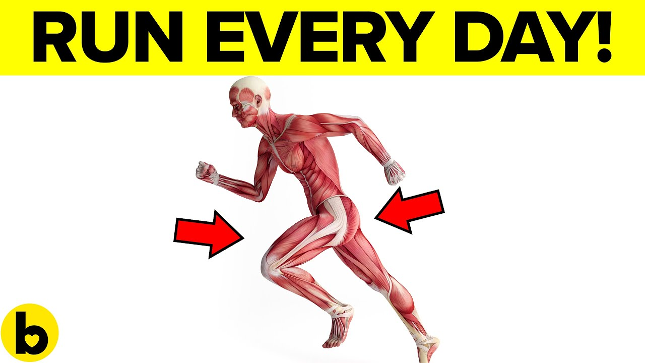 Run every Day and see what happens to your Body
