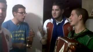Bailinho da Madeira - Live Performance - Madeirense Network
