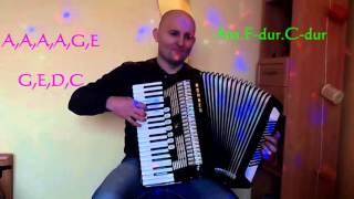 Avicii- Wake me up cover accordion TUTORIAL