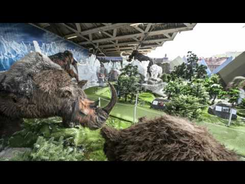 Mammoth – the Ice Age is here!