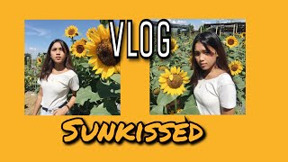 VLOG: Sunflower  Farm Candelaria Quezon