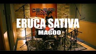 ERUCA SATIVA - Magoo - Drum Cover   Julian Olguin