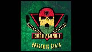 Gang Albanii - Klub GO GO (Reggae Mix)