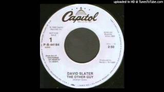 David Slater - The Other Guy