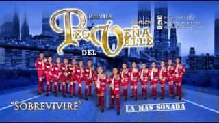 """Sobrevivire - Banda La Pequeña Del Valle 2017 """"CD 2017"""""""