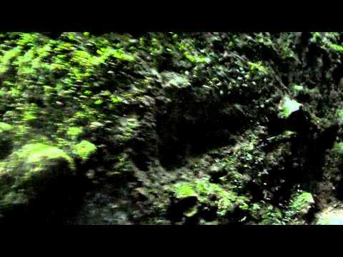 sinar cardoza el tunel del viento volcan mombacho nicaragua.AVI