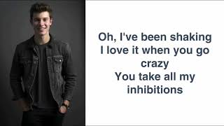 Shawn Mendes - There's Nothing Holding Me Back (Lyrics)