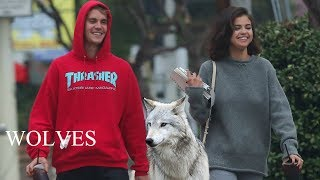 Selena Gomez - Wolves (Manip music video) feat. Justin Bieber