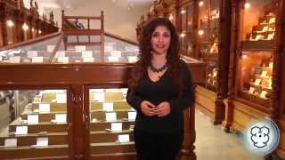 Materia Gris 13 Museo de Mineralogía UAEH