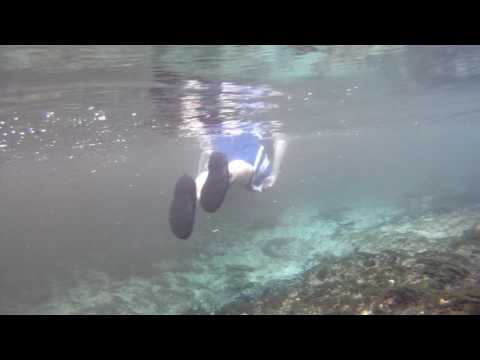 Snorkeling in Seven Sisters Springs, Chassahowitka River, Florida