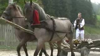 Marius Zgâianu -  Când porneşte joc în sat...Contact: Tel: 0742 080 183 / www.mariuszgaianu.ro