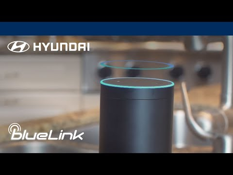 Life Just Got Easier - Amazon Echo and Blue Link   Sonata