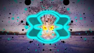 Sean Paul ft. Dua Lipa - No Lie (Bass Boosted) (HD)