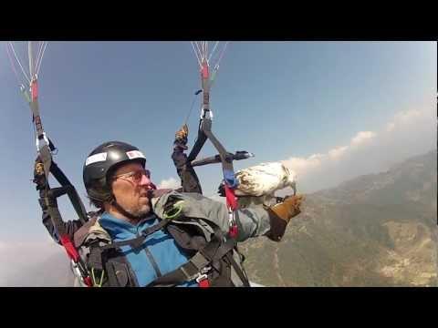 parahawking GoPro