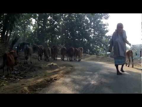 Alikadam Market Day Banderban, Bangladesh 4 of 15