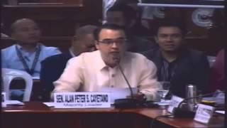 Allan Peter Cayetano, SAF 44,Mamasapano, Philippine Senate, Investigation, February 24, 2015, 8/14