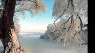 Richard Clayderman - Tema de nadia (instrumentales de oro)