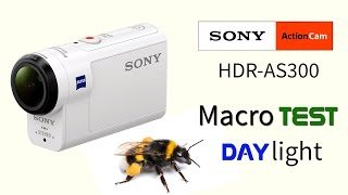 Sony HDR-AS300 macro test daylight. Action cam test.