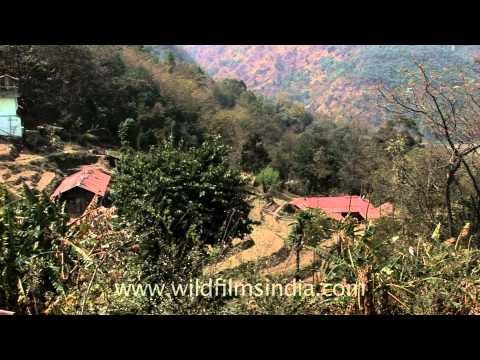 Naga Hills – Kohima city, Nagaland
