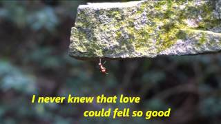 Westlife -  I lay my love on you +lyrics, 720P HD