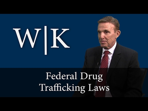 Federal Drug Trafficking Laws (USC 21 Section 841)