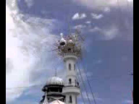a marical of islam in nepal.flv