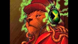 Colectiv - Budějice jamajka je