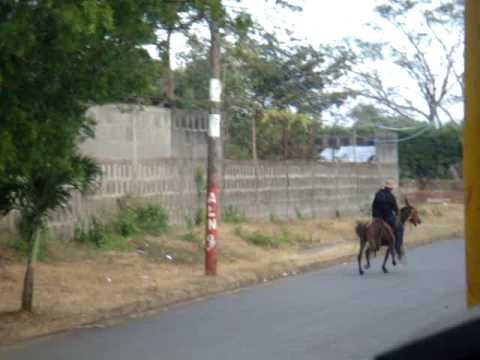 Cundito con su caballo