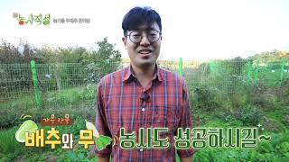 [新농사직설 30회] 서이장의3분농법 - 가을철무배추관리법 다시보기