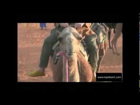 Desert journey by TopDesert.com