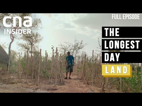 Combating Drought: Reviving Asia's Lost Lands, One Tree At A Time | The Longest Day | Climate Change