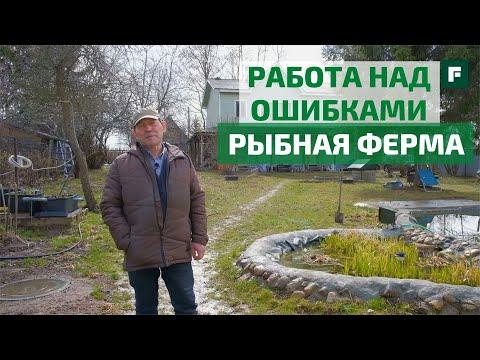 Рыбная ферма и пруд своими руками: советы опытного рыбовода-любителя // FORUMHOUSE