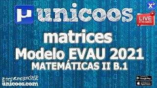 Imagen en miniatura para LIVE!!! Modelo EvAU 2021 - Matemáticas II 12 - Ejercicio B.1 Matrices