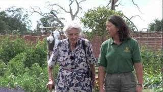 Then & Now - Life As A Female Head Gardener During The War & For The National Trust width=
