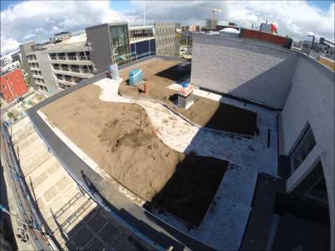 Veg Tech bygger biotoptak i Malmö